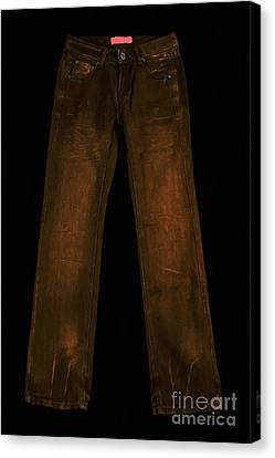 Pair Of Jeans 3 - Painterly Canvas Print by Wingsdomain Art and Photography