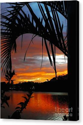 Palm Framed Sunset Canvas Print by Kaye Menner