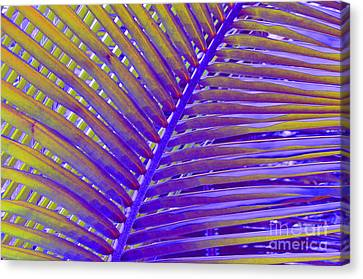 Palm Tree Abstract Canvas Print by Cindy Lee Longhini