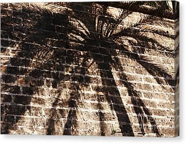 Palm Tree Cup Canvas Print