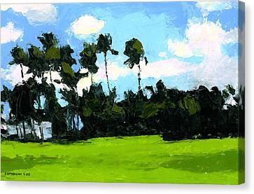 Palms At Kapiolani Park Canvas Print by Douglas Simonson