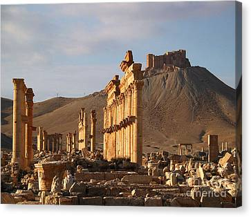 Canvas Print - Palmyra by Issam Hajjar