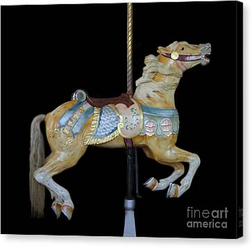 Palomino Carousel Horse Canvas Print by Cindy Lee Longhini