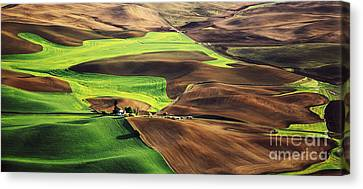 Palouse Farm Country Canvas Print by Dennis Flaherty and Photo Researchers