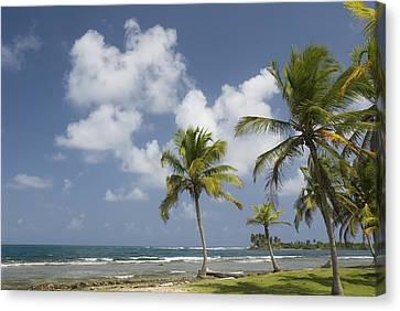 Panama Beach Scene Canvas Print