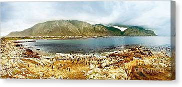Panoramic Landscape With Penguins Canvas Print by Anna Om