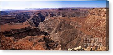 Panormaic View Of Canyonland Canvas Print by Robert Bales