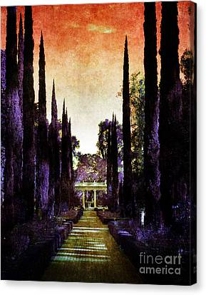 Pan's Twilight Canvas Print by Laura Iverson