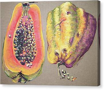 Papaya For Breakfast Canvas Print by Barbara Richert