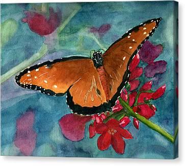 Papilio Fandango  Canvas Print