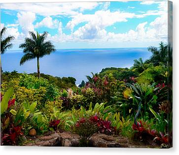 Paradise Found Canvas Print by Debbie Karnes