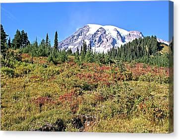 Paradise In Fall On Mt. Rainier 2 Canvas Print