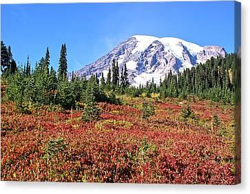 Paradise In Fall On Mt. Rainier  Canvas Print