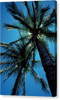 Paradise Island Canvas Print by Mike Flynn