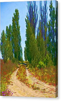 Paradise Road Canvas Print by Randall Nyhof