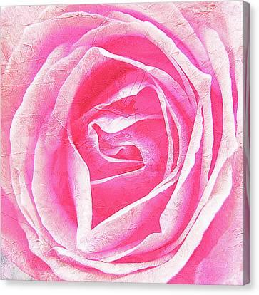 Parfume Of Roses Canvas Print by Susanne Kopp