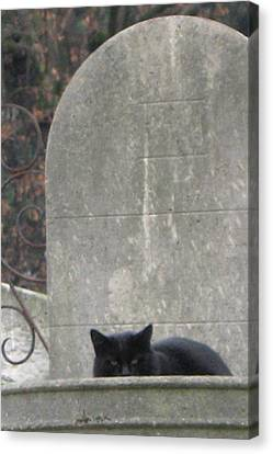 Paris Cemetery - Pere La Chaise - Black Cat On Gravestone - Le Chat Noir Canvas Print by Kathy Fornal