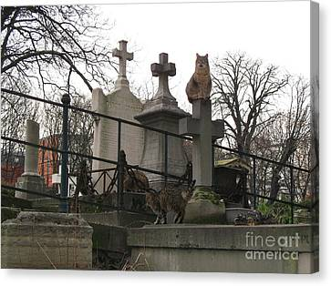 Paris Cemetery - Pere La Chaise - Wild Cats Roaming Through Cemetery Canvas Print by Kathy Fornal