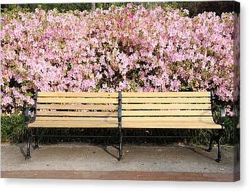 Canvas Print featuring the photograph Park Bench And Azaleas by Bradford Martin