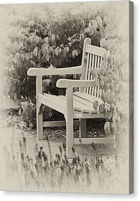 Park Bench Canvas Print by Bill Barber