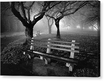 Park Benches Canvas Print by Gary Heller