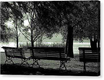Park Benches In Autumn Canvas Print by Joana Kruse