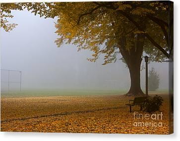 Park In Autumn Canvas Print by David Buffington