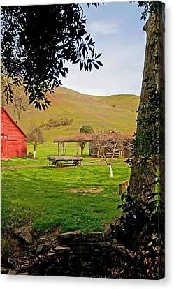 Park In Hayward Canvas Print