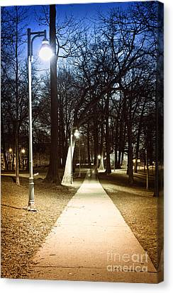 Park Path At Night Canvas Print by Elena Elisseeva