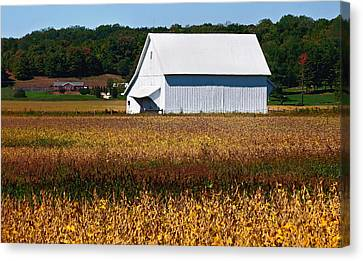 Parke County Countryside Canvas Print
