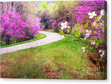 Parkway Kind Of Spring Canvas Print by Darren Fisher