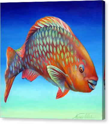 Parrot Fish Canvas Print by Nancy Tilles
