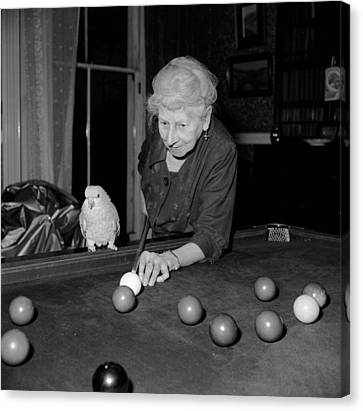Parrots And Snooker Canvas Print by Reg Speller