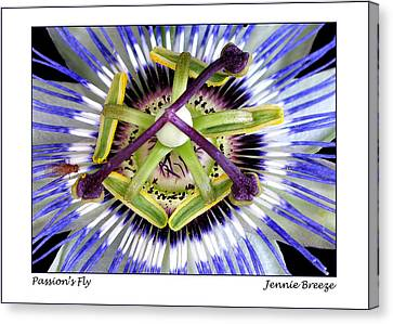 Canvas Print featuring the photograph Passion's Fly by Jennie Breeze