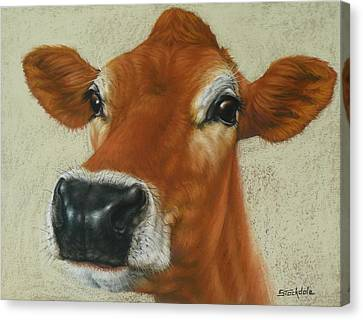 Pastel Cow Canvas Print by Margaret Stockdale