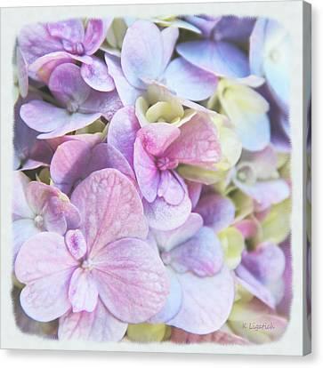 Canvas Print featuring the photograph Pastel Hydrangeas - Square by Kerri Ligatich