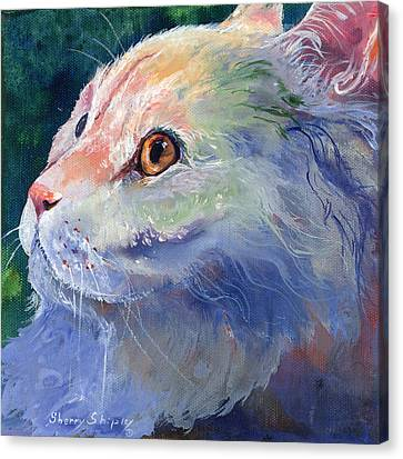 Pastel Persian Canvas Print by Sherry Shipley
