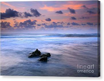 Pastel Tides Canvas Print by Mike  Dawson