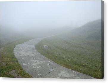 Path In The Fog Canvas Print by Matthias Hauser