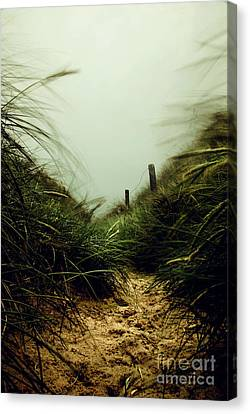 Path Through The Dunes Canvas Print by Hannes Cmarits