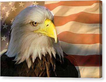 Patriotic Eagle Canvas Print by Marty Koch