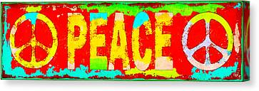 Peace Canvas Print by David G Paul