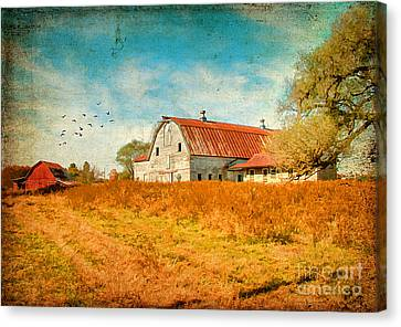 Peaceful Day's Canvas Print by Darren Fisher