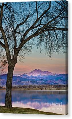 Peaceful Early Morning Sunrise Longs Peak View Canvas Print by James BO  Insogna