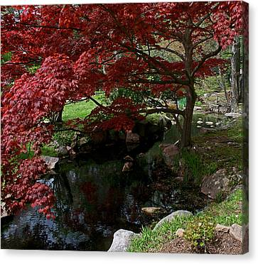 Peaceful Park Canvas Print