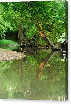 Peaceful Pond Canvas Print by Douglas Barnett