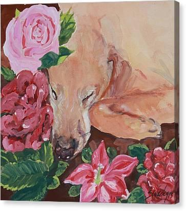 Peaceful Slumber Canvas Print