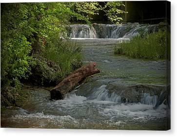Peaceful Stream Canvas Print by Cindy Rubin