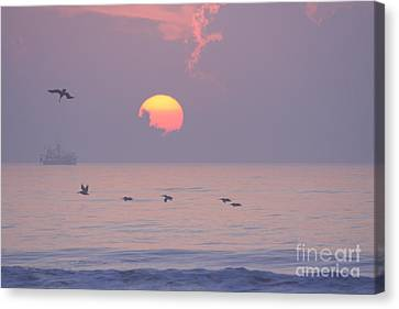 Peaceful Sunrise Canvas Print by Clint Day