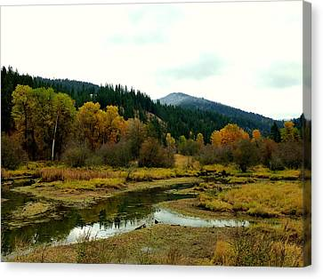 Canvas Print featuring the photograph Peaceful Waters Near Coeur D'alene by Cindy Wright